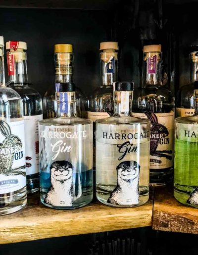 Ale House gin collection
